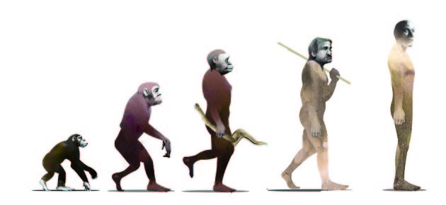 Intelligence of apes misunderstood because of bias and bad science