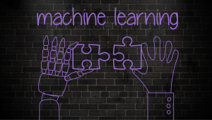 The vital role of humans in machine learning
