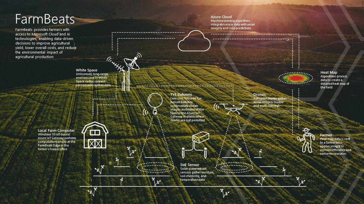 Inside the farm of the future