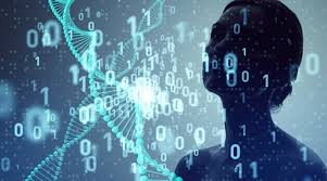 Companies prefer practical data skills to Data Science degrees: Survey
