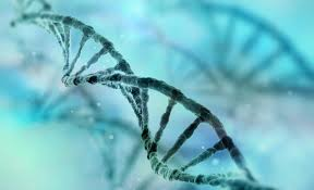 DNA data mining has concerning potential