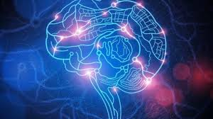 Applying deep learning to PET/CT scans helps clinicians diagnose neurodegenerative disorders