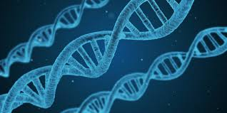 Deep Learning Used to Find Disease-Related Genes