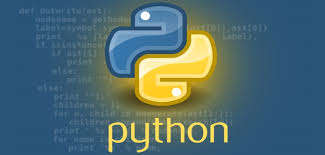 What is the difference between Python and Ruby?
