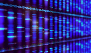 Big Data Analytics Tool Could Help Guide Cancer Precision Medicine