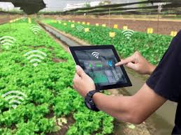 Pioneering Ventures Acquires Lateral Praxis To Enable Agritech Solutions