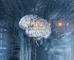 Israeli scientists develop deep-learning method to predict brain's age