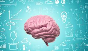 Memory Storage Study Asks How Human Intelligence Is Different