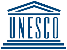 UNESCO Launches the findings of the Artificial Intelligence Needs Assessment Survey in Africa