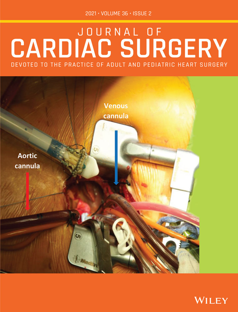 Artificial intelligence and cardiac surgery during COVID‐19 era