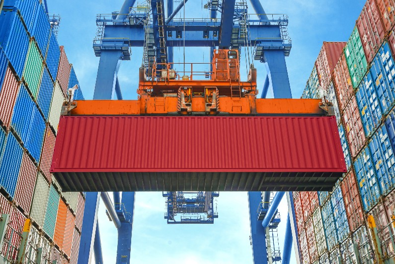 Government trialling machine learning tech to detect pests at shipping ports