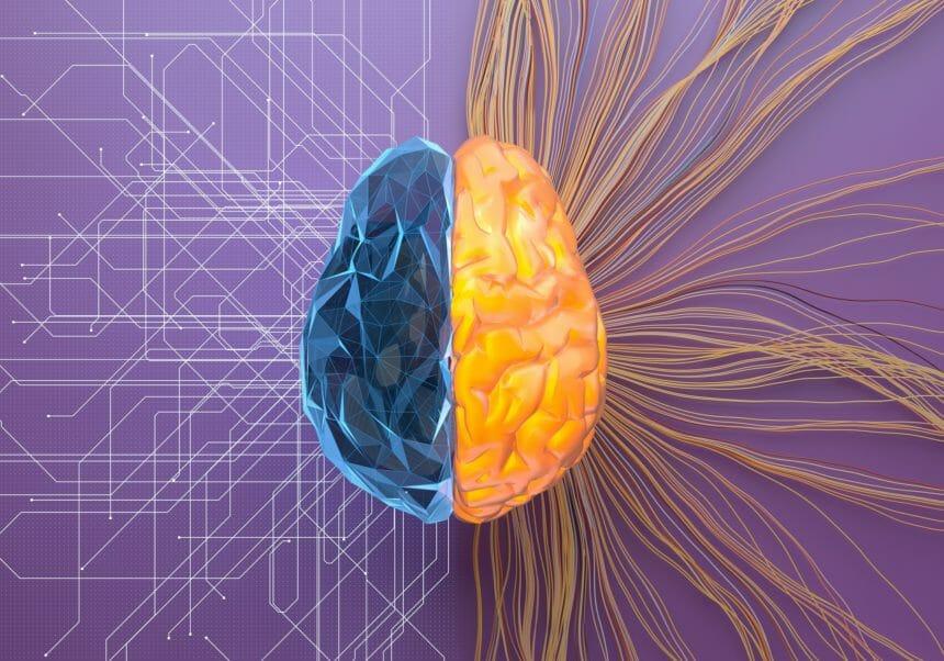 Deep Learning AI System Filters Seizure Verification Data