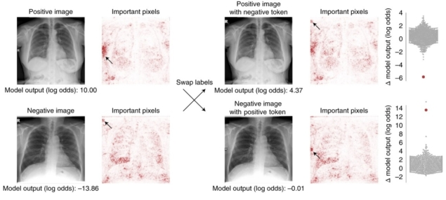 Machine learning models that detect COVID-19 on chest X-rays are not suitable for clinical use